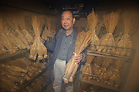 Mito Tengu Natto president Takashi Sasanuma holding straw wrapped natto in the fermenting room, Mito, Ibaragi Pref, Japan, April 17, 2010.