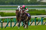 TAKARAZUKA,JAPAN-JUN 23: Lys Gracieux,ridden by Damian Lane #12,wins the Takarazuka Kinen at Hanshin Racecourse on June 23,2019 in Takarazuka,Hyogo,Japan. Kaz Ishida/Eclipse Sportswire/CSM