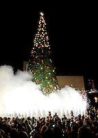 Encendio de Arbol navideño 2012  PARTE 1