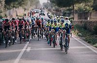 Team WB Aqua Protect - Veranclassic forming a new sprint-train<br /> <br /> 27th Challenge Ciclista Mallorca 2018<br /> Trofeo Campos-Porreres-Felanitx-Ses Salines: 176km