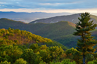 Early morning view from Brown Mountain Overlook, located along Skyline Drive in the south district of the park