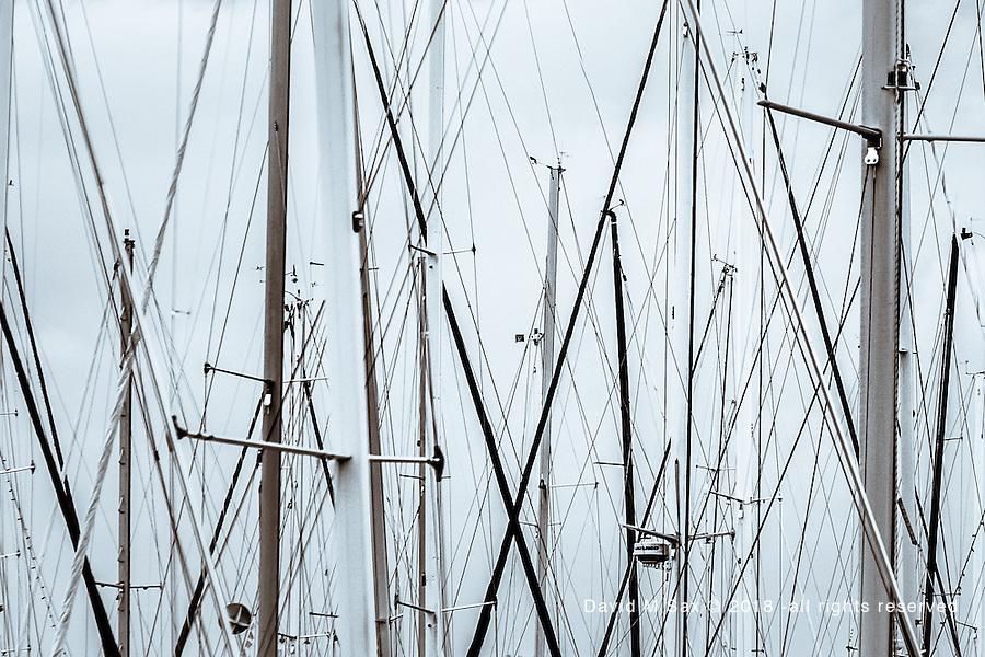 12.25.16 - Masts...
