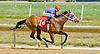 Run Like a Raven winning at Delaware Park on 7/12/12