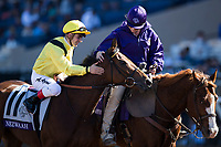 DEL MAR, CA - NOVEMBER 04: Nezwaah #11, ridden by Andrea Atzeni, is rubbed by a woman on the track on Day 2 of the 2017 Breeders' Cup World Championships at Del Mar Thoroughbred Club on November 4, 2017 in Del Mar, California. (Photo by Alex Evers/Eclipse Sportswire/Breeders Cup)