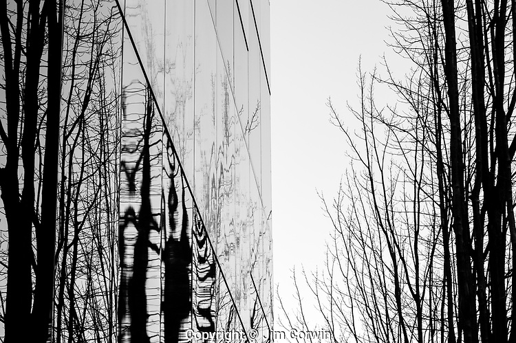 Metroploitan Building downtown Seattle abstract views of building and glass windows with reflections of tree limbs