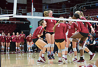 STANFORD, CA - November 3, 2018: Meghan McClure, Sidney Wilson, Kate Formico. Jenna Gray, Tami Alade, Kathryn Plummer at Maples Pavilion. No. 1 Stanford Cardinal defeated No. 15 Colorado Buffaloes 3-2.
