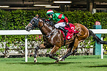 Jockey #8 Victor Wong riding Eagle during Hong Kong Racing at Happy Valley Racecourse on September 05, 2018 in Hong Kong, Hong Kong. Photo by Yu Chun Christopher Wong / Power Sport Images