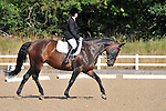 31/07/2015 - Class 2 - Prelim 19 - British Dressage - Brook Farm TC