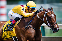 BALTIMORE, MD - MAY 19: Terra Promessa #4 (yellow hat), ridden by Jose Ortiz, comes around the turn for home with the pack and wins the Allaire Dupont Distaff Stakes on Black-Eyed Susan Day at Pimlico Race Course on May 19, 2017 in Baltimore, Maryland.(Photo by Douglas DeFelice/Eclipse Sportswire/Getty Images)