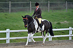Arena B afternoon. Showing. RIHS qualifiers. Brook Farm Training Centre. Essex. UK. 07/04/2019. ~ MANDATORY Credit Garry Bowden/Sportinpictures - NO UNAUTHORISED USE - 07837 394578