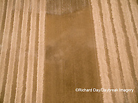 63801-09502 Soybean Harvest, Soybean field partially harvested - aerial - Marion Co. IL