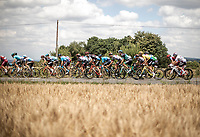yellow jersey Greg Van Avermaet (BEL/BMC) in the peloton.<br /> <br /> Stage 5: Lorient > Quimper (203km)<br /> <br /> 105th Tour de France 2018<br /> ©kramon