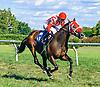 Sea Treaty winning at Delaware Park on 9/7/16