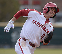 Arkansas left fielder Braydon Webb heads to the plate Friday, Feb. 14, 2020, on a single by right fielder Heston Kjerstad during the first inning against Eastern Illinois at Baum-Walker Stadium in Fayetteville. Visit nwaonline.com/200214Daily/ for today's photo gallery.<br /> (NWA Democrat-Gazette/Andy Shupe)