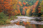 Stream and Fall foliage, St. Johnsbury, Vermont, USA