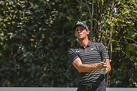 Thomas Pieters (BEL) watches his tee shot on 3 during round 1 of the World Golf Championships, Mexico, Club De Golf Chapultepec, Mexico City, Mexico. 3/1/2018.<br /> Picture: Golffile | Ken Murray<br /> <br /> <br /> All photo usage must carry mandatory copyright credit (&copy; Golffile | Ken Murray)
