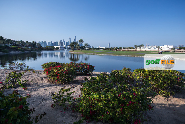 18th fairway  at The Address Montgomerie Golf Club, Dubai, United Arab Emirates.  27/01/2016. Picture: Golffile | David Lloyd<br /> <br /> All photos usage must carry mandatory copyright credit (&copy; Golffile | David Lloyd)