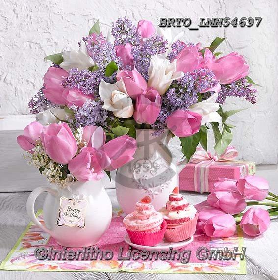 Alfredo, FLOWERS, BLUMEN, FLORES, photos+++++,BRTOLMN54697,#f#, EVERYDAY ,rose,roses