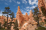 Hoodoos at the Queens Garden trail
