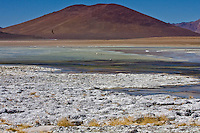 Laguna Verde (Green Lagoon) is a salt lake in the southwest of the altiplano of Bolivia, in the Department of Potosí, Province of Sud Lípez elevated some 4,300 m (14,000 ft) above sea level.