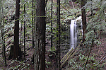 Waterfall in Gazos Creek forest