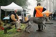 Image Ref: YV136<br /> Location: Gembrook<br /> Date: 27th July 2014
