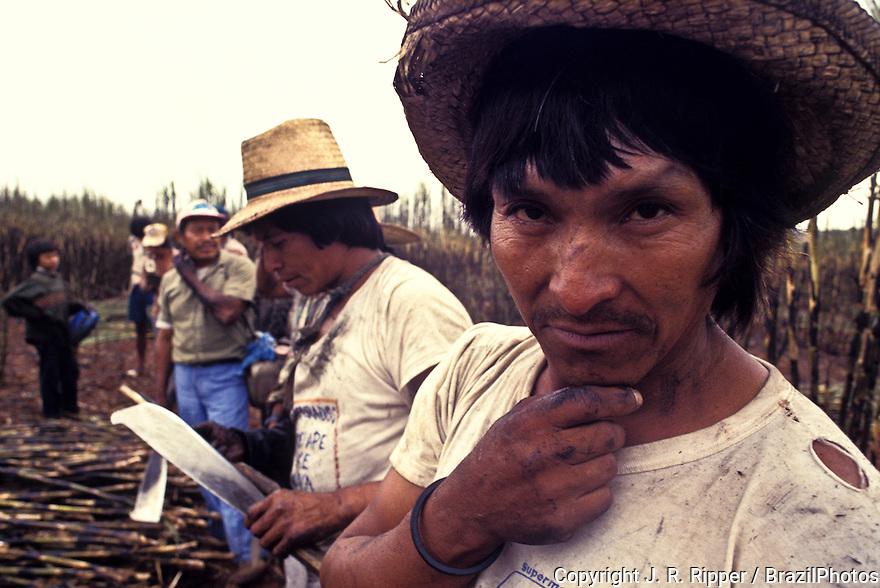 Biofuel production, Guarani indigenous people working as sugarcane cutters, ethanol plant, Navirai city, Mato Grosso do Sul State, Brazil.