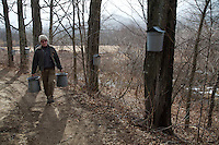 Tapping sugar maple trees to collect sap is an old mountain tradition. Buckets attached to the tree are sparingly used, and instead, sap is collected through a complicated maze of tubing that snakes through the woods. Rob Hastings has fond childhood memories of helping to carry buckets to the sugar house where they boiled sap down to make syrup.  Today he boils the sap down making up to 400 gallons annually, producing syrup, cream and candy.  .In 1906 his great grandfather, a minister, bought Rivermede which he ran as a gentleman's farm.  It had been a hotel and is the second oldest home in Keene Valley(1802).   .Today, he maintains the historic house and grounds for the family, and grows organic vegetables and flowers he sells to locals and tourists from his store in Keene Valley..