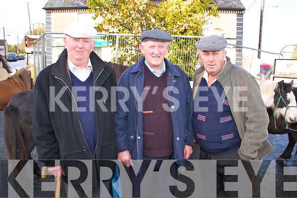 Pictured at the Fair Day in Athea on Saturday were L-R : Denis O'Connor of Knockaderry, Mick McCoy of Athea and Con Ambrose of Loughal.