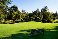 Image Ref: M278<br />