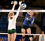 BROOKINGS, SD - OCTOBER 28: Sierra Peterson #1 from South Dakota State hammers the ball past Ally Murphy #4 from North Dakota State during their match Sunday afternoon at Frost Arena in Brookings. (Photo by Dave Eggen/Inertia)