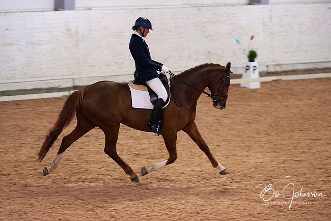 Helen Johansson riding Strano (Hejbols De Strano, e De Noir - Golfstrom II, born 2007, breeder Per Torp, owner Helen Johansson) in dressage competition Msv C:2 at Sydslattens Ryttarforening in Anderslov. <br />