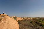 Israel, the northern Negev. Wadi Besor