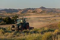 Europe, Espagne, Navarre, env d'Arguedas: Parc Naturel des Bardenas Reales, Blanca Baja, Travaux des champs // Europe, Spain, Navarre, near Arguedas: Bardenas Reales Natural Park,White Bardena, Fields work