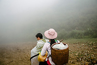 Giang A Tru and his wife Tan Thi Si, who are black cardamom (Thao Qua) farmers, driving through the mist to Hoang Lien Son National Park to harvest their crops.