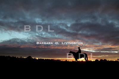 Artax at Saratoga, 2000. Saratoga Race Course, Saratoga Racetrack, beautiful horse racing, Thoroughbred racing, horse, equine, racehorse, morning mood scenic, mood, horse racing, pretty, racehorse, horse, equine, racetrack, track, saratoga