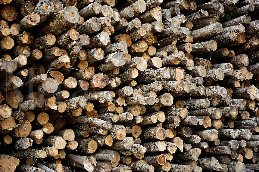 Stacks of rough lumber, Vermont, USA