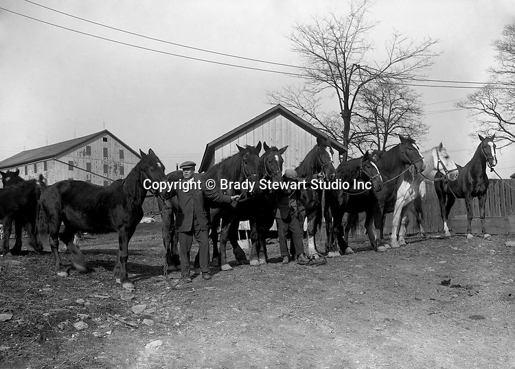 Southwestern OH: Businessman showing off horses to the members of the Brady Family outside of Cincinnati Ohio  - 1913