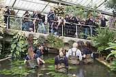 London, UK. 16 March 2015. Press photographers taking pictures of Boris Johnson. Mayor of London Boris Johnson puts on waders and joins Kew horticulturist Carlos Magdalena, apprentices and diploma students in the pond to plant young Victoria amazonica waterlilies, colourful hybrid waterlilies, in the Princess of Wales Conservatory at the Royal Botanic Gardens, Kew.