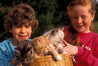 AJ3473, friends, kitten, cat, sharing, girls, Two happy girls sit together holding a basket of three adorable kittens (5-6 weeks old) on their laps in Exton in the state of Pennsylvania.