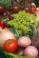 Cauliflower Romanesco weird sputnik type, potatoes, onions, tomatoes, peppers, vegetables picked harvest in basket