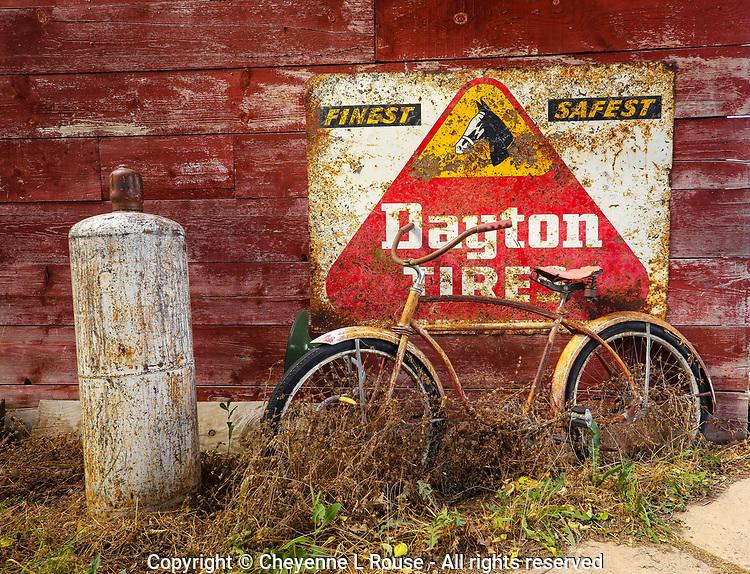 Dayton Tires Bike