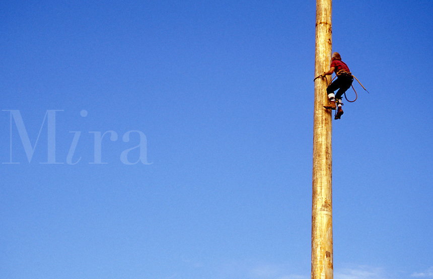 Lumberjack climbing pole in lumberjack show, Snohomish County, Washington State Fair, Monroe, W
