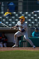 Braden Zarbnisky (26) of the West Virginia Mountaineers follows through on his swing against the Illinois Fighting Illini at TicketReturn.com Field at Pelicans Ballpark on February 23, 2020 in Myrtle Beach, South Carolina. The Fighting Illini defeated the Mountaineers 2-1.  (Brian Westerholt/Four Seam Images)