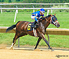 Milaya winning at Delaware Park on 6/23/15