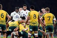 Courtney Lawes of England looks on at a scrum. Quilter International match between England and Australia on November 24, 2018 at Twickenham Stadium in London, England. Photo by: Patrick Khachfe / Onside Images