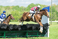 21 April 2012:  Better Than Even and Jacob Roberts win the Foxhunters Bowl at Middleburg Spring Races at Glenwood Park in Middleburg, Va. Better Than Even is owned by Russell Cline and trained by Simon Hobson.   Susan M. Carter/Eclipse Sportswire