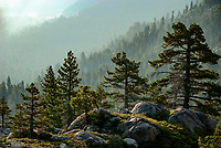 Boulders and pines fill the foreground in front of smoky mountain ridges above Donner Lake, smoky from wildfires more than one hundred miles distant. Nevada County, California