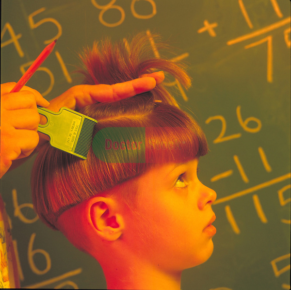 young boy at school being checked for lice