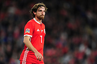 Joe Allen of Wales during the UEFA Nations League B match between Wales and Ireland at Cardiff City Stadium in Cardiff, Wales, UK.September 6, 2018